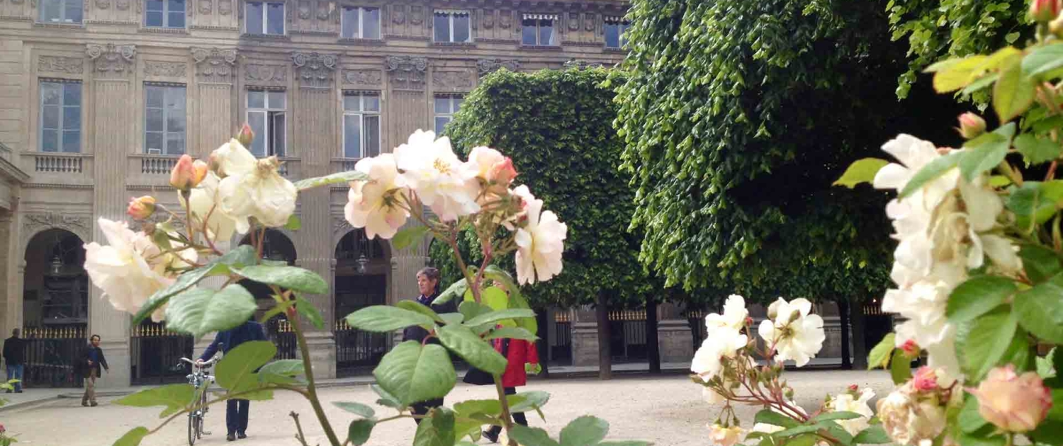 Walking Tour Palais Royal Paris